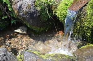 凄い勢いで湧き出る『鰈山清水』