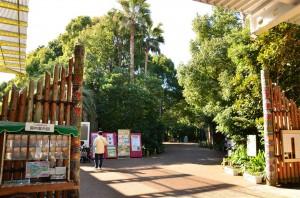 『アジアの熱帯雨林』エリア
