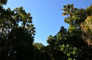 当日は晴天に恵まれてとても良い天気