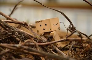 ダンボー、枯れ木によじ登る