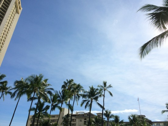 ハワイらしい青空!