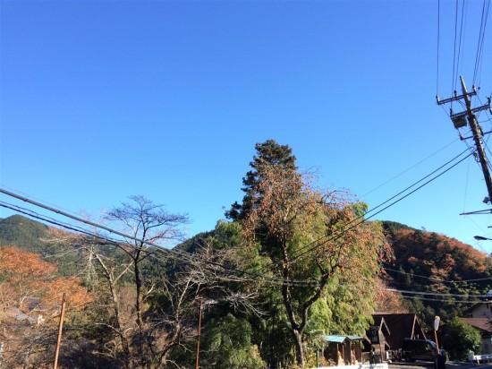 当日は雲ひとつ無い秋晴れ!