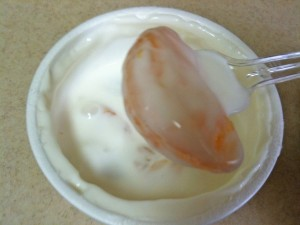 fruit_yogurt05