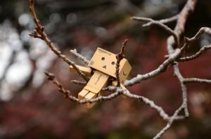 桜のハンモックでくつろぐダンボー