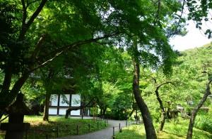 三渓園内西側の景色