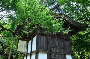 旧天瑞寺寿塔覆堂(きゅうてんずいじ じゅとうおおいどう)