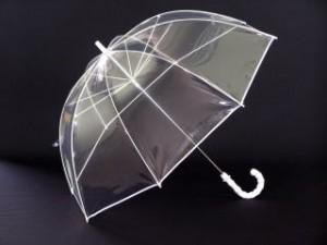 政治家が選挙演説で使うビニール傘